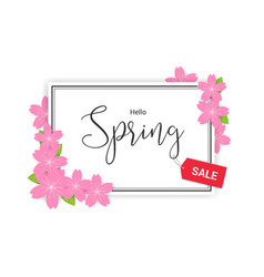 Cherry blossom frame or hello spring flowers vector