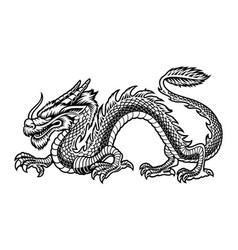 a black and white chinese dragon vector image
