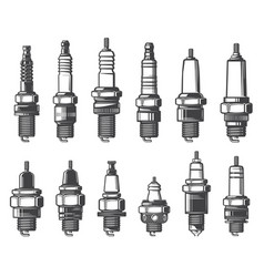 Car spark plugs types isolated icons vector