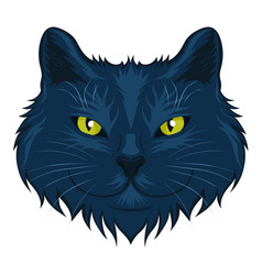 cat head isolated on a white background vector image