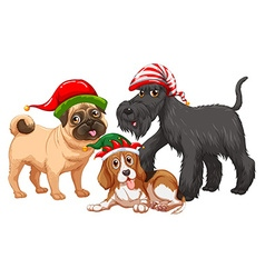 Christmas theme with dogs wearing christmas hats vector