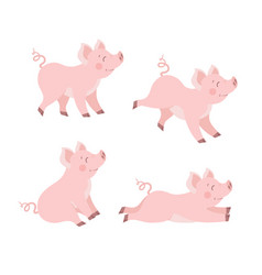 cute pig set in different poses cartoon ill vector image