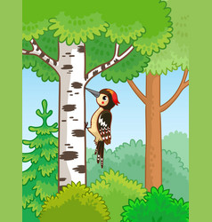 cute woodpecker sitting on a tree and knocks vector image