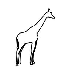 Giraffe it is black icon vector