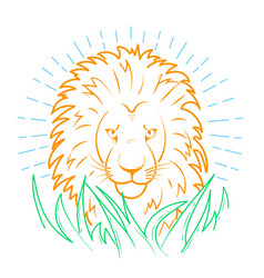 Icon of a lion in the grass vector