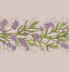 lavender pattern vector image