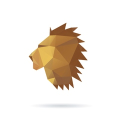 Lion head abstract isolated on a white backgrounds vector image