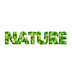 nature word made beautiful paper cut flowers vector image
