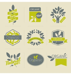 Organic retro labels vector