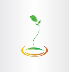 plant seed germination design vector image