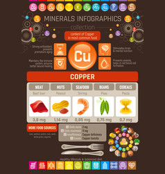 copper mineral supplements rich food icons vector image