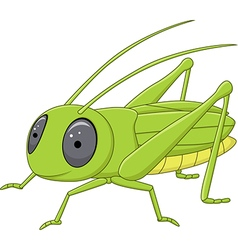 Cute grasshopper posing isolated vector image