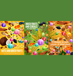 Dried fruits nuts and cereals vitamins vector