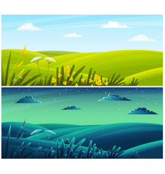 field plants grasses stems summer lawn vector image