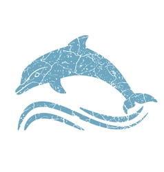 grunge dolphin silhouette vector image