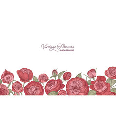 horizontal backdrop decorated with blooming garden vector image