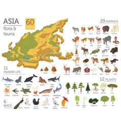 Isometric 3d asian flora and fauna map vector