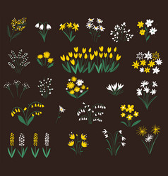 set summer flowers silhouettes spring vector image