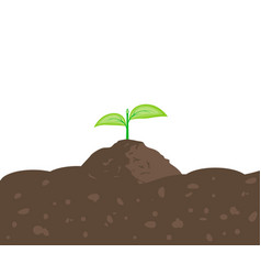 sprout in the ground vector image vector image
