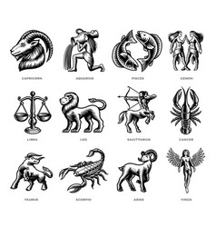 black and white zodiac signs set vector image