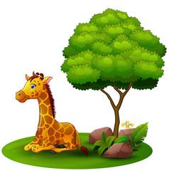 Cartoon giraffe sitting under a tree on a white ba vector