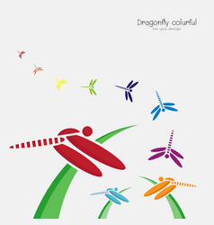 colorful dragonflie on green grass and dragonflie vector image