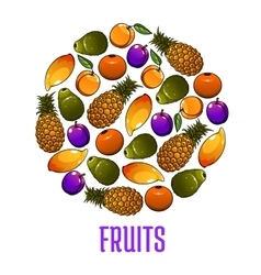 Emblem of fresh fruits icons in circle shape vector image