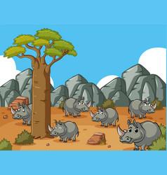 Savanna field with many rhinos vector