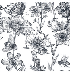 seamless pattern with hand drawn chamomile vector image