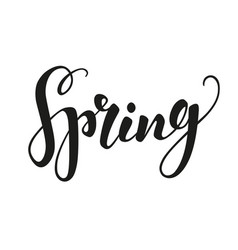 Spring text lettering vector