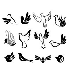 Abstract bird symbol set vector image vector image