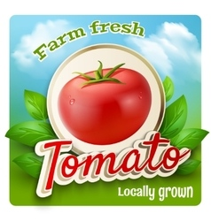 Tomato Promo Poster vector image