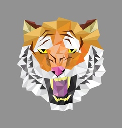 Tiger head polygon geometric vector image