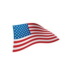 usa flag isolated vector image