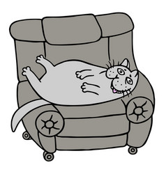 cartoon lazy grey fat cat is lying on a armchair vector image