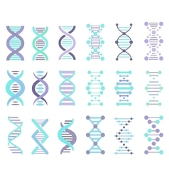 DNA Strands Set vector
