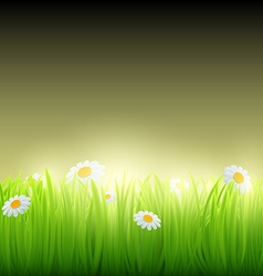 Green grass with flowers vector
