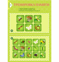 memory game children insects vector image