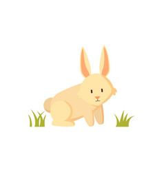 Small furry creature white rabbit cartoon poster vector