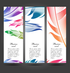 business cards with feathers for your design vector image vector image
