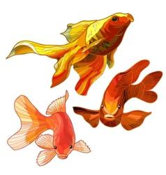 Set of Gold Fish vector image