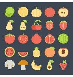 fruit flat icon set vector image vector image