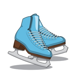 Skates vector image vector image