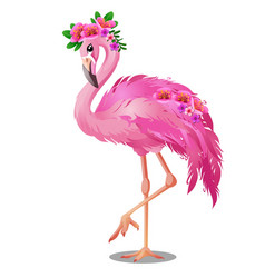 Beautiful bird pink flamingo with flowers isolated vector