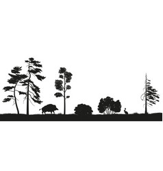 black silhouette of forest trees vector image