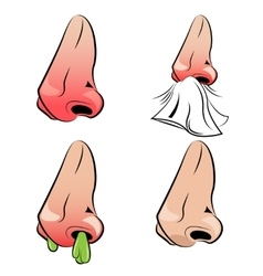 Runny Nose Set vector image