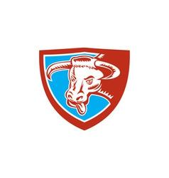 Angry Texas Longhorn Bull Head Shield Woodcut vector image vector image
