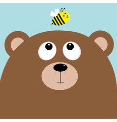 Bear grizzly big head looking at honey bee insect vector image