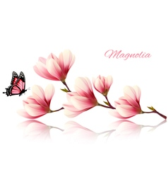 Beautiful magnolia branch with a butterfly vector