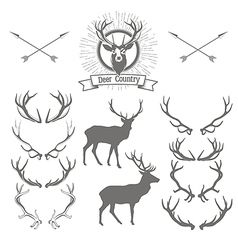 Set of deers silhouette deer head and antlers vector